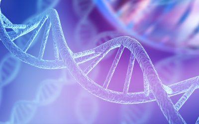 Exame de DNA, saiba tudo que você pode descobrir sobre você mesmo